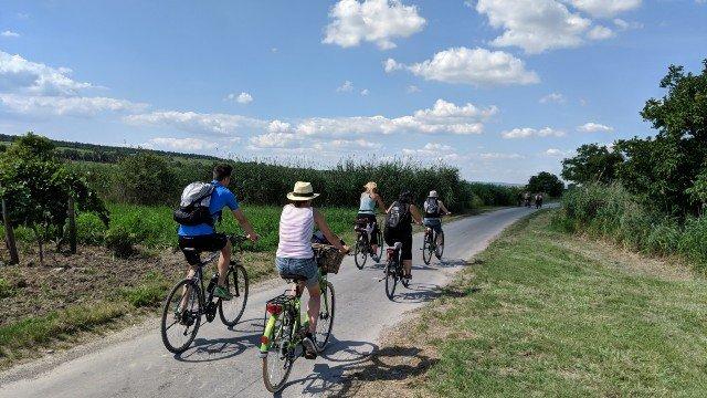 radfahren-geocaching-route-rust-fertoerakos-schilfguertel-teamevent-firmenausflug-mgs