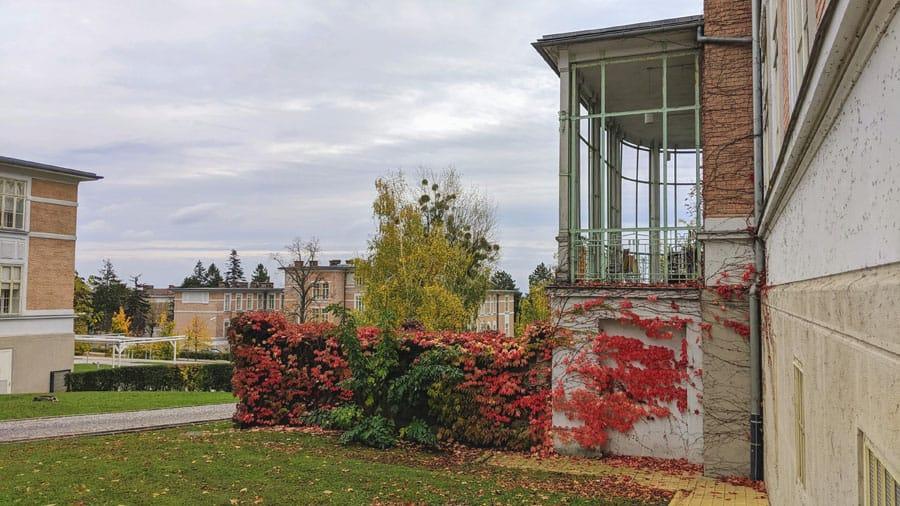 geocaching baumgartner hoehe steihofgruende otto wagner spital teambuilding betriebsausflug park pavillon